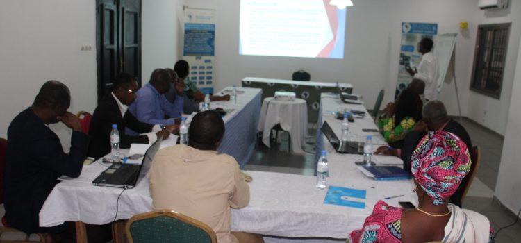 Atelier de formation des formateurs en observation électorale